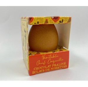Œuf chocolat praliné éclats de noisettes